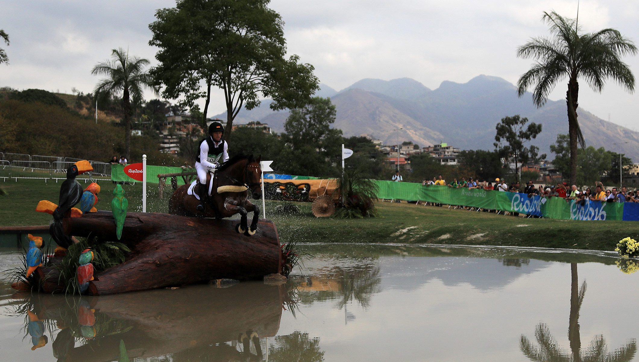 Equestrian Eventing