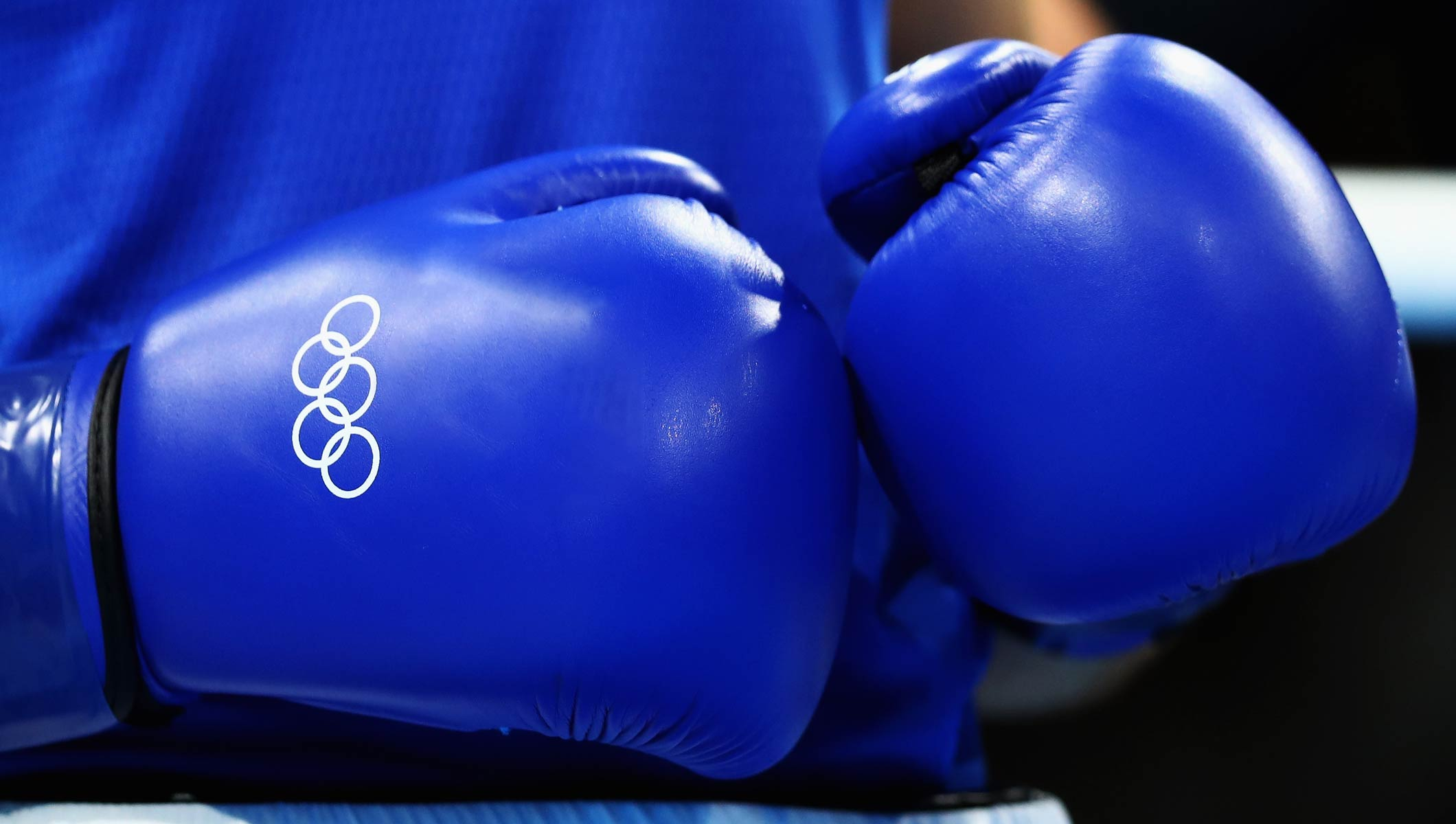 Blue boxing gloves with the Olympic rings