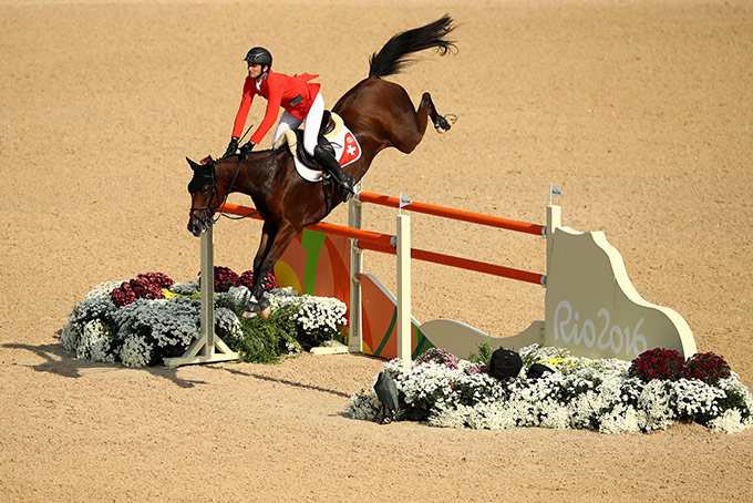 Equestrian / Jumping