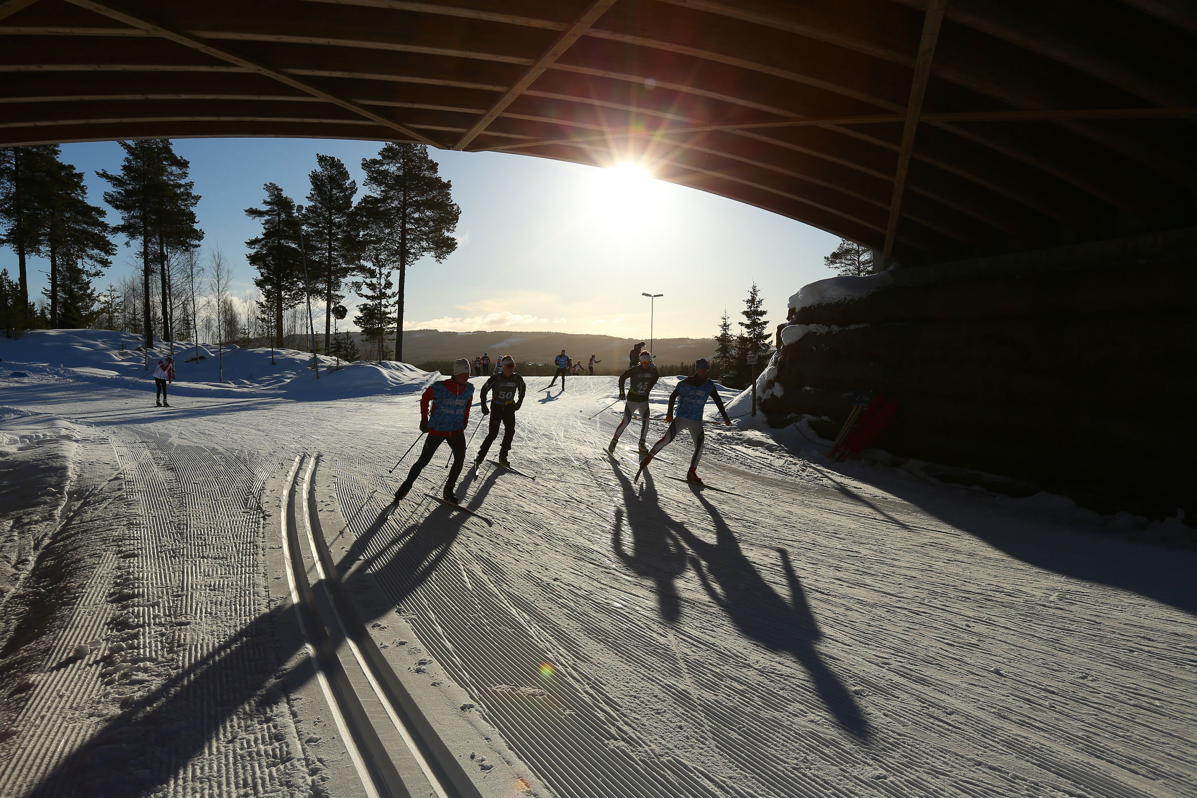 Cross-Country Skiing Training session