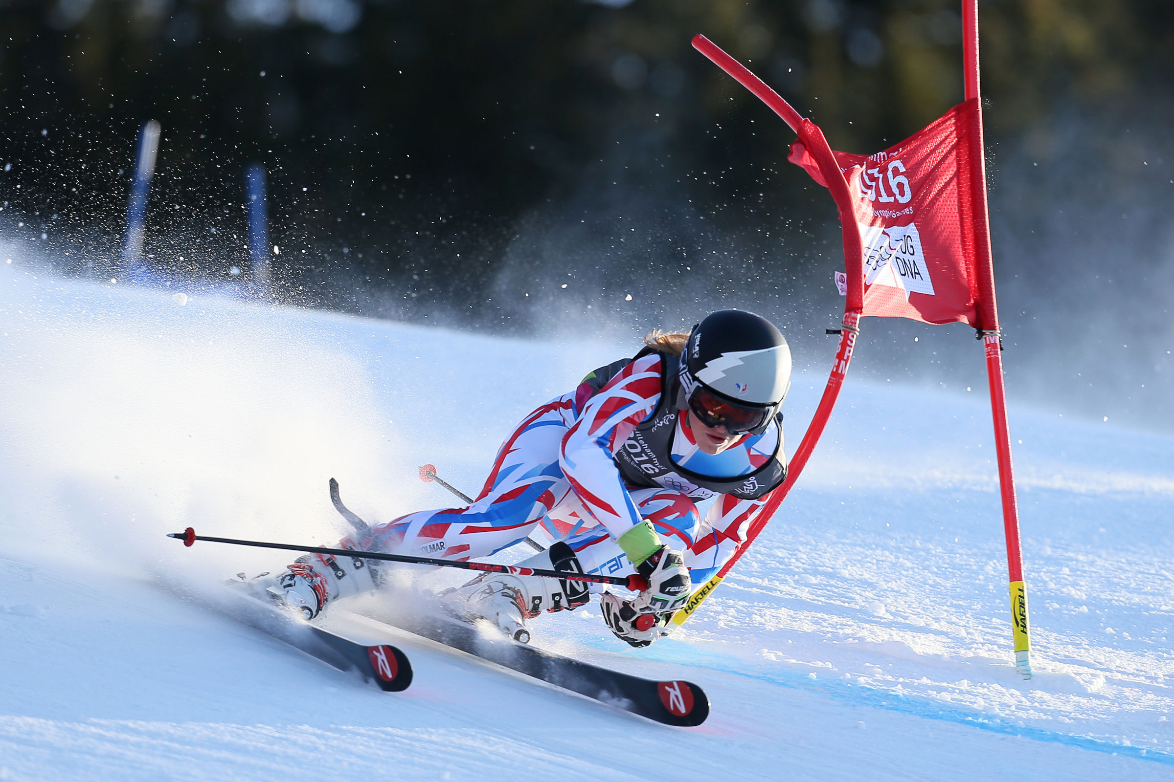 Alpine Skiing Ladies' Giant Slalom