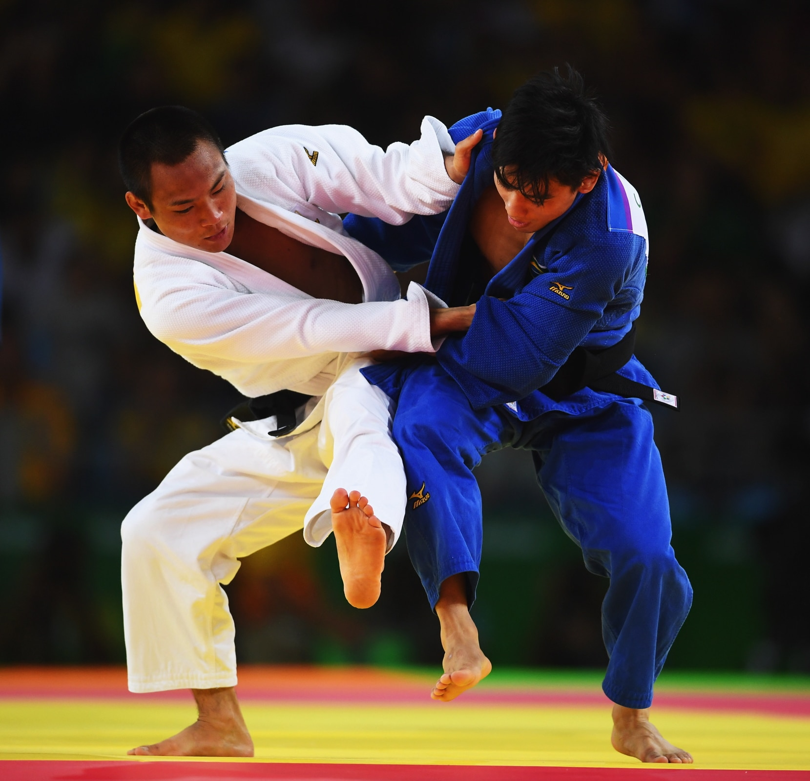 Judo 60 - 66kg (Half-lightweight) men