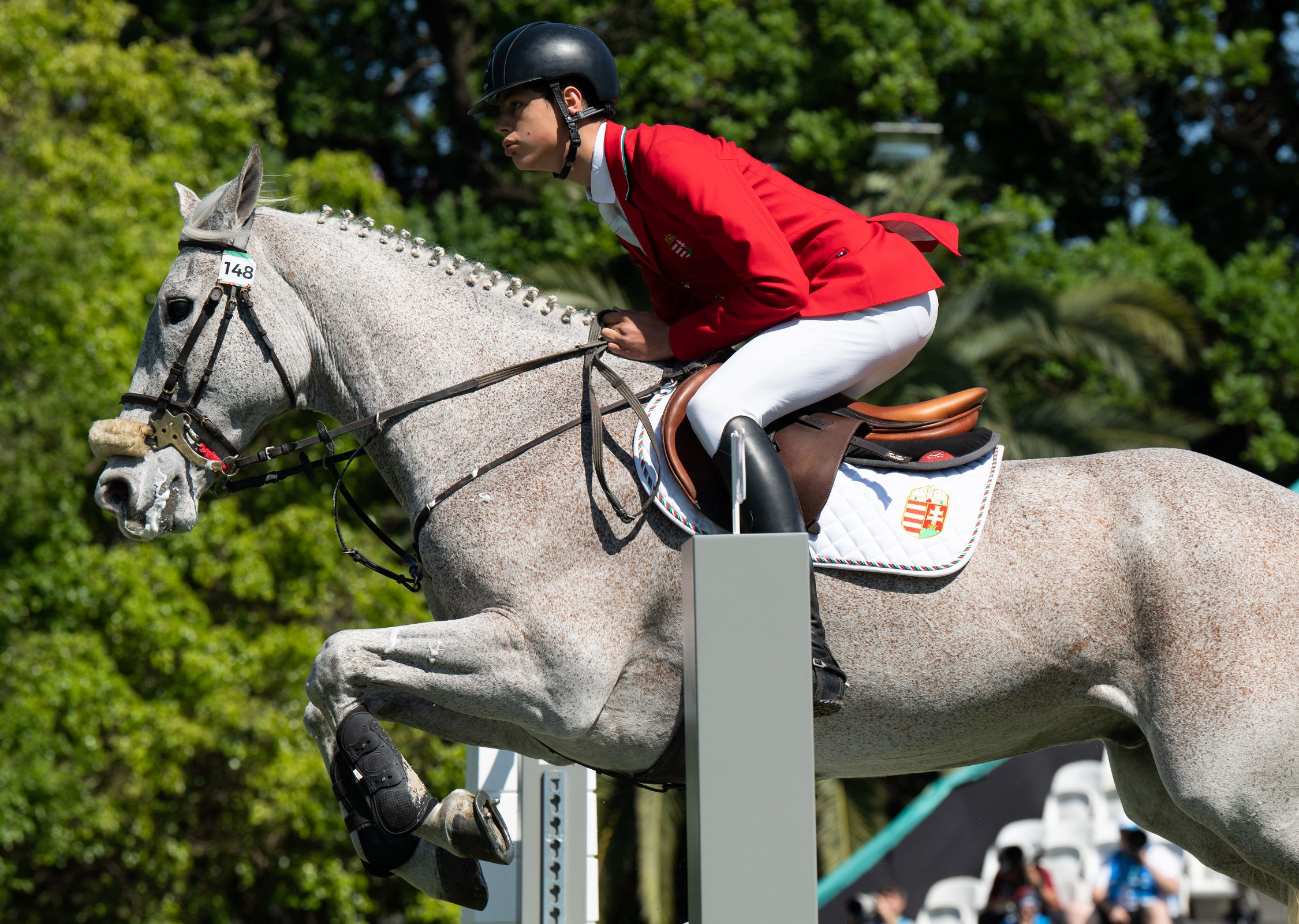 Buenos Aires 2018 - Equestrian - Jumping